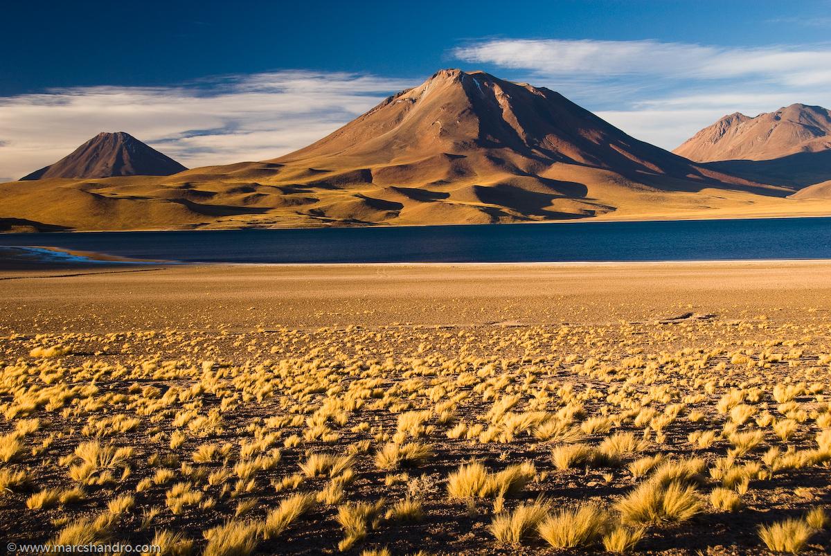 Volcan y Laguna Miscanti