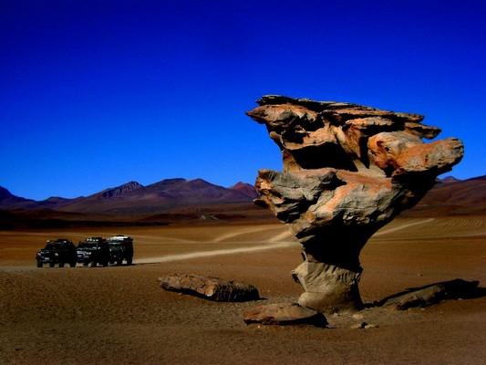Roca con forma de árbol en el trayecto hacia el Salar de Uyuni