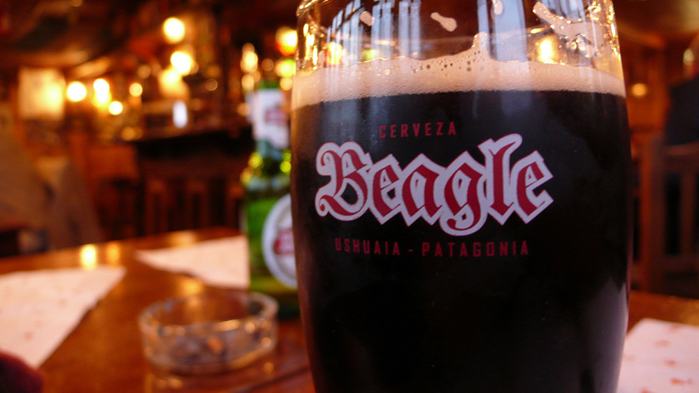 Cerveza Beagle en el bar