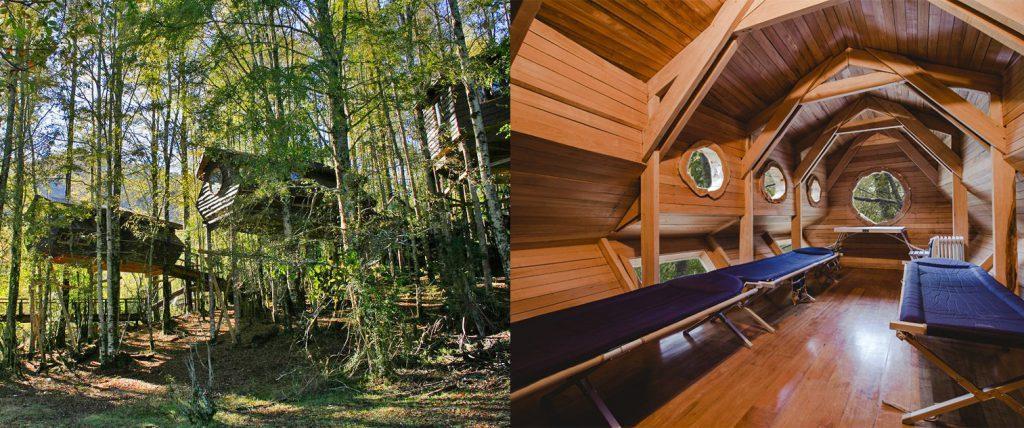 Alojamientos tipo cabañas en el bosque