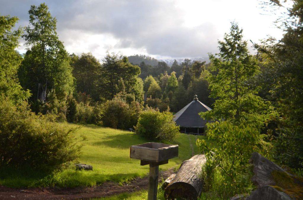 Sector de camping en bosque de huilo huilo