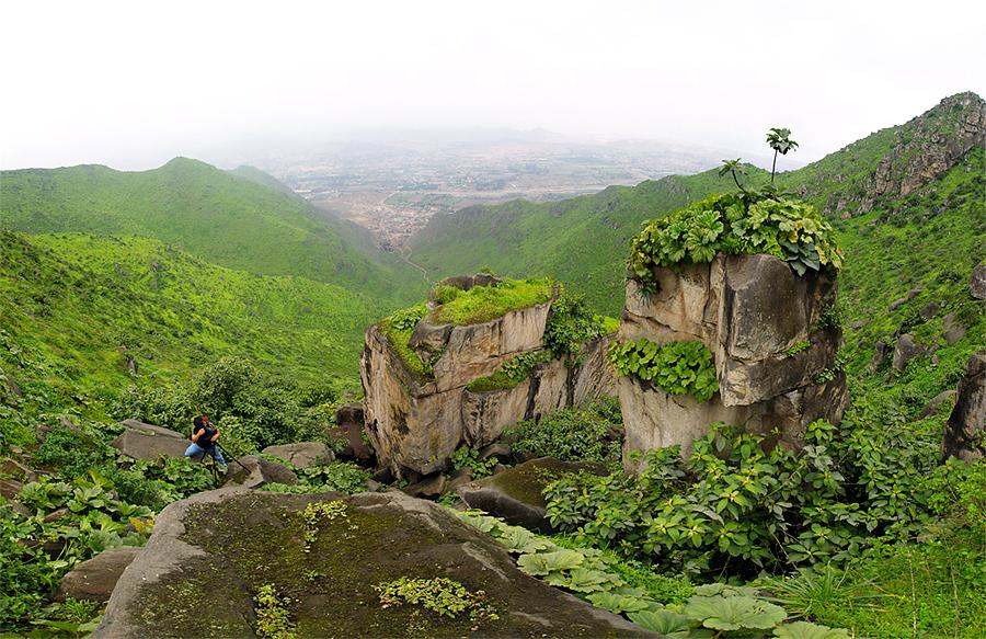 Formaciones rocosas cubiertas de vegetación en trekking en Lima
