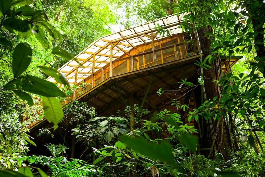 Casa de madera enmedio de la selva en iquitos