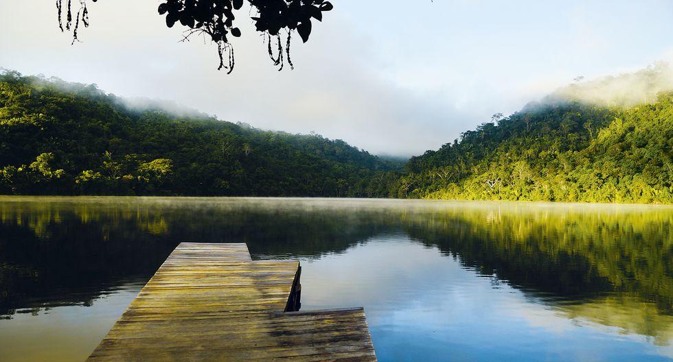 Laguna enmedio de la selva peruana en tarapoto