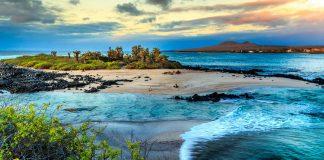 Isla en medio de aguas color turquesa