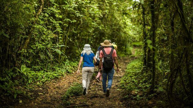 Viajeros realizando senderismo en Tayrona
