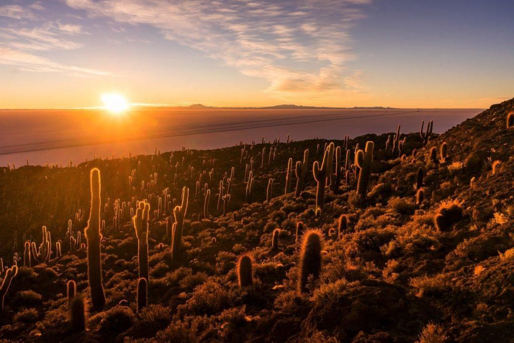 Amanecer en isla con cactus enmedio de un salar