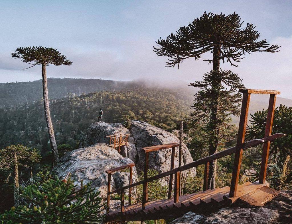Viajero sobre roca observa bosque desde las alturas en Chile