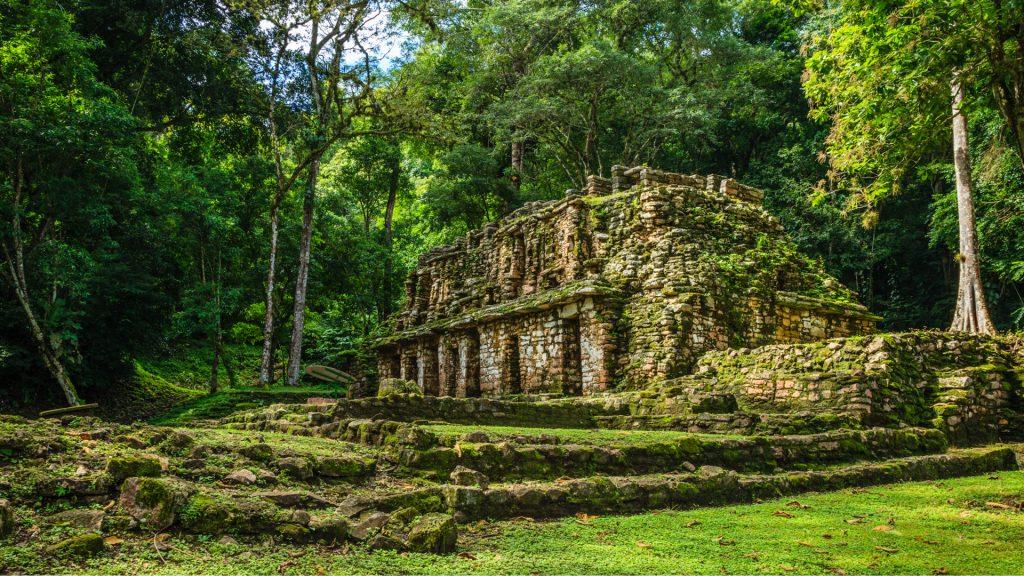 Restos arqueológicos en medio de la selva en méxico