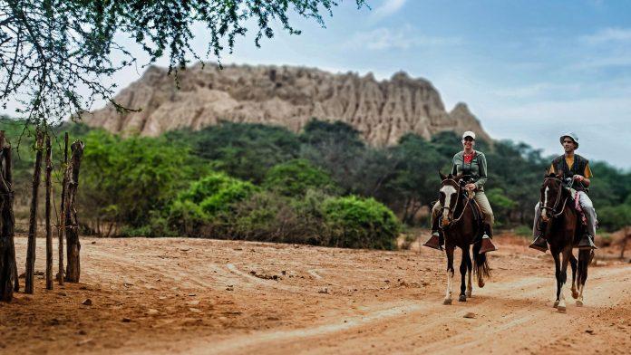 Dos personas cabalgando en medio de bosque en el desierto